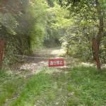 川股ダム最奥部の通行止め地点の画像