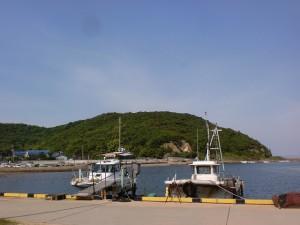 引田港から見る引田城趾(城山)の画像