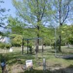田ノ浦キャンプ場(東かがわ市)の画像