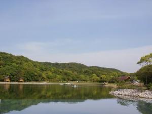 大池オートキャンプ場(海側から)の画像