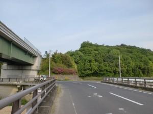 とらまる橋西詰交差点からとらまる橋を渡っているところの画像