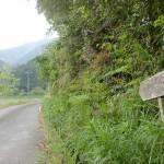 戸祇御前山登山口へ続く林道の入口の画像