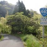 国道440号線の地芳峠に向かう旧道の画像