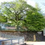 旧中津小学校前(久万高原町)の画像
