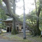 大宮八幡神社(久万高原町中津)の画像