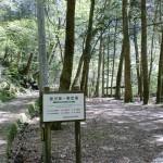 面河第一野営場(キャンプ場)※面河渓谷の画像