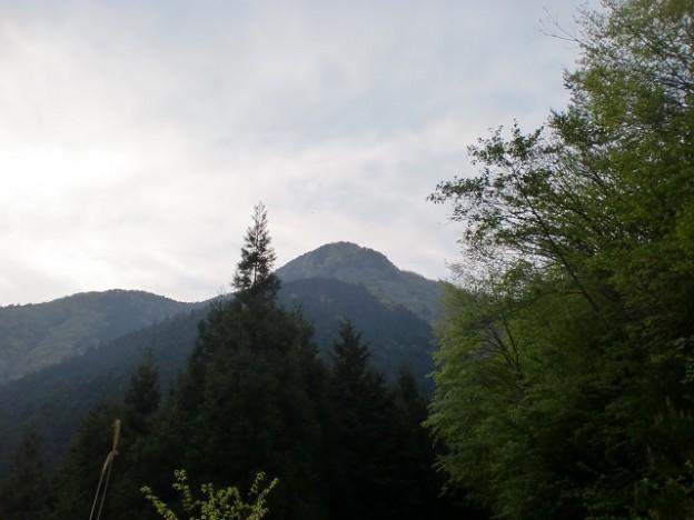 楠窪林道から見る三ヶ森(たぶん三ヶ森・・・)の画像