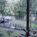 白猪ノ滝公園キャンプ場の画像