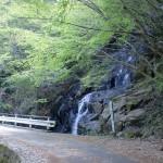 林道梅ヶ谷永子線の道路沿いにある御来光の滝の画像