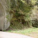 林道梅ヶ谷永子線の井内峠隧道南出口横にある梅ヶ谷山・うめなご登山口の画像