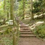 上林森林公園の風穴横にある皿ヶ嶺登山道入口の画像