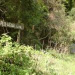 国道317号線沿いにある嵯峨子城址入口の画像