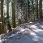 水ヶ峠の楢原山登山口(竜岡木地登山口)の画像