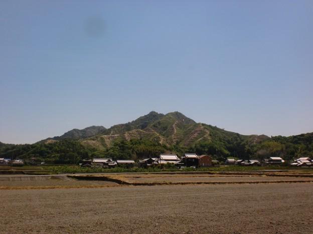 朝倉支所方面から見る笠松山(今治市)の画像