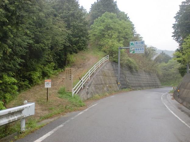 唐谷峠(田野々越)の大谷山登山口の画像