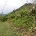 讃岐財田の百丁石(箸蔵街道)の手前の登山道に入るところの画像
