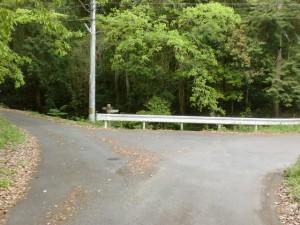 前山ダム北側のダム沿いの車道を進んだ先のT字路を左折した先の分岐地点の画像