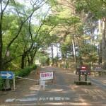 公渕森林公園内の遊歩道