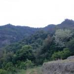 石船側の登山道入口から見る鷲ノ山