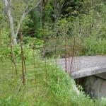 笠形山登山道入口(中通側)にあるコンクリートの橋