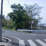 飯野山登山口(野外活動センター側)手前の高速をくぐったところ