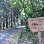 稲荷山公園の上にある神南山山頂への林道にてられた神南山を示す道標