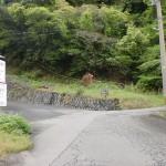 明礬バス停のすぐ上にあるへびん湯への林道の入口に入ってすぐの分岐の先にある分岐