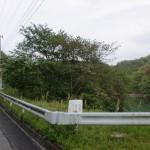 城山(西長尾城跡)の登り口手前にある池の前