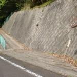 大川山キャンプ場に行く途中にある「だいせんみち」を示す道標の画像