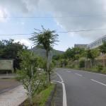 パストラルホール前の丸太村への分岐