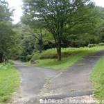 貞昌寺の入口分岐の坂を上がったところの分岐