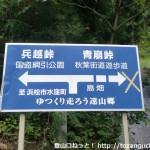 国道152号線沿いの青崩峠と兵越峠の分岐地点のカーブに設置されている通行止めの標識