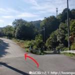 意賀美神社本殿南側のT字路の先の新滝ノ池への分岐