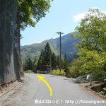 易老渡・便ヶ島に向かう林道の分岐2