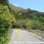 易老渡・便ヶ島に向かう林道の分岐5