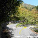 易老渡・便ヶ島に向かう林道の分岐6