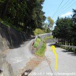 易老渡・便ヶ島に向かう林道の分岐7