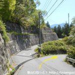 易老渡・便ヶ島に向かう林道の分岐8