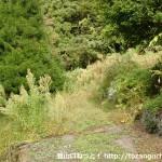 寂地登山口バス停のすぐ上にある登山道の入口