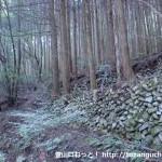 城将山登山口から登山道に入ったところで見られる棚田跡の石組