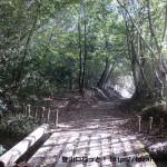 有馬富士・福島大池に向かう林道