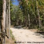 北浦神社宝殿右側の林道