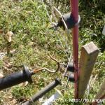 大船山の十倉登山口に行く手前の林道入口の電流柵を外すところ