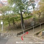 清荒神の大駐車場横にある大林寺への石段を上った先にある石段