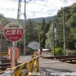 紀見峠駅北側の踏切