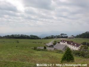 らかん高原の牧場