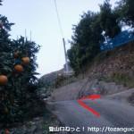 熊野古道の山口王子跡の少し上で左の農道に入った先にある辻