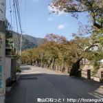 阪急芦屋川駅北側の芦屋道路との分岐を直進したところの川沿いの道