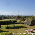 有馬富士公園の芝生広場を上から見下ろしたところ