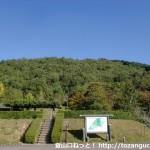 有馬富士公園の芝生広場から見上げる有馬富士